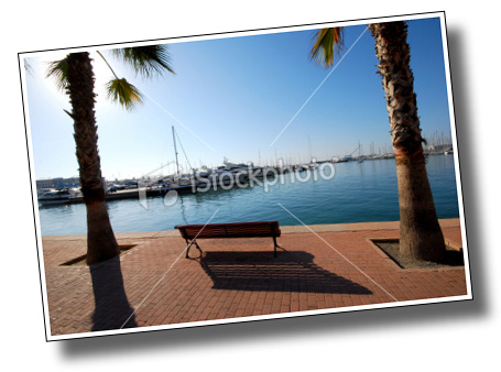 bench between two palm trees at Alicante, Spain, August  